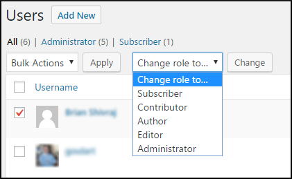 changing users role and permission in WordPress